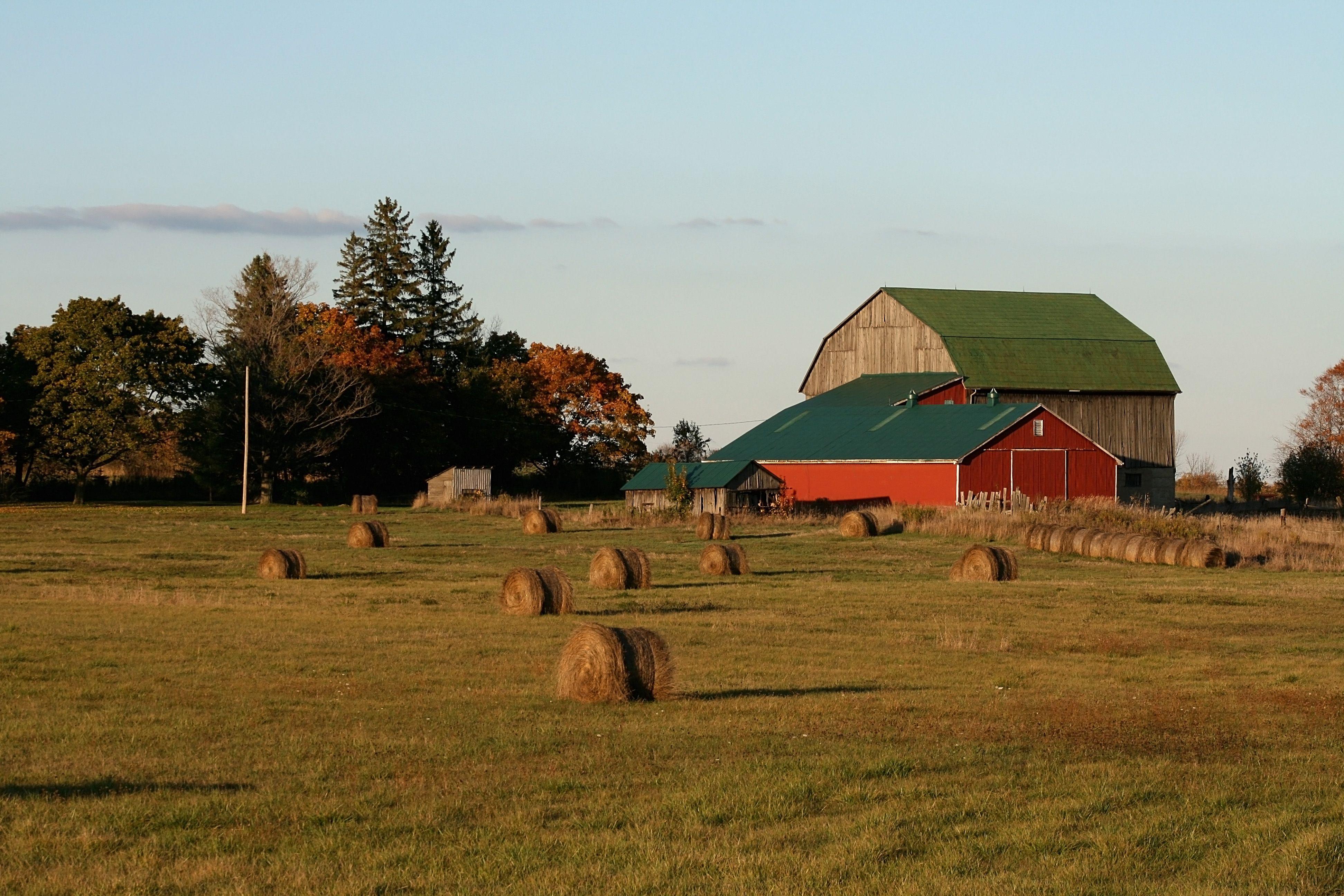 Hey field Country barns, Farm yard, Country scenes