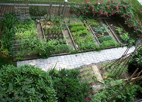Inspiring small space design for veggies