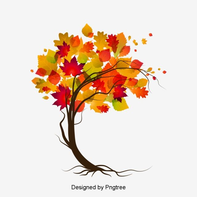 Autumn Tree Vector Autumn Leaves Branch Png Transparent Clipart Image And Psd File For Free Download Autumn Trees Leaves Vector Leaf Clipart