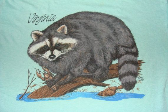 Vintage 80s Racoon Virginia Blue T Shirt by vintageteesonline, $24.99