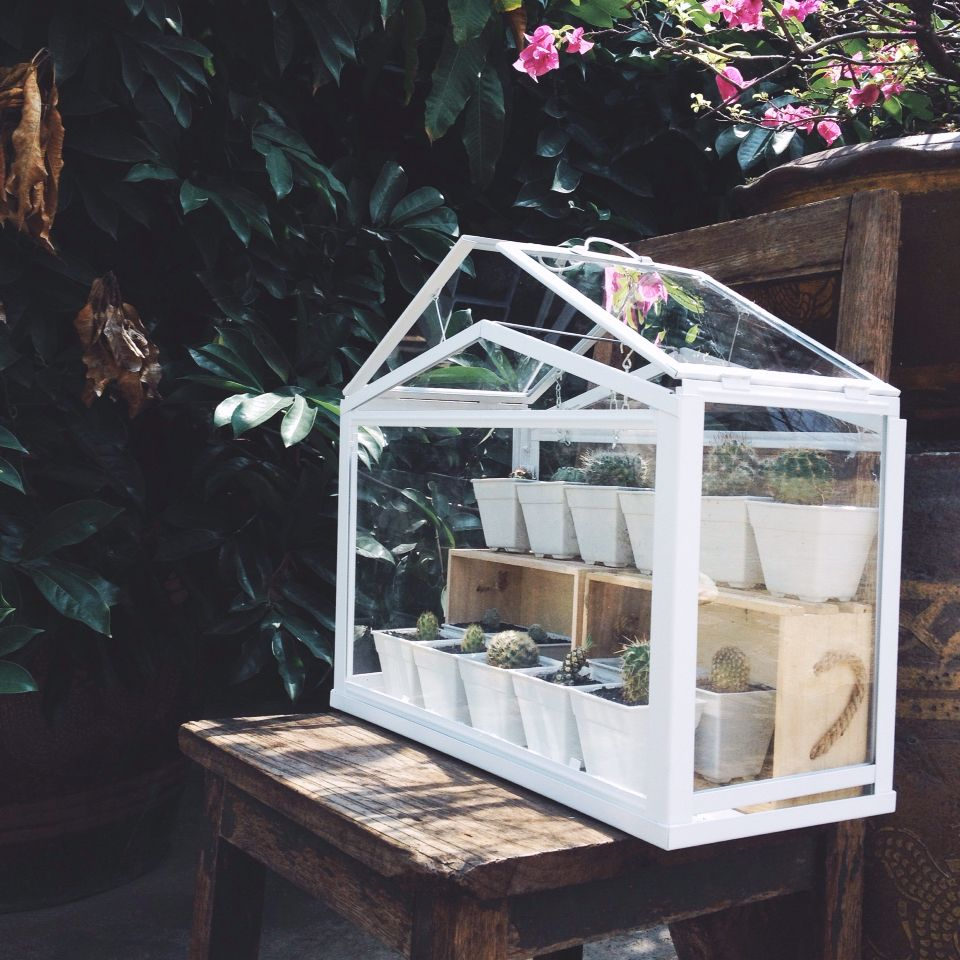 ikea terrarium greenhouse for my cactus cactus pinterest balkon ideen f rs zimmer und diy. Black Bedroom Furniture Sets. Home Design Ideas