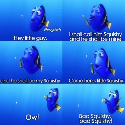 Dory Scolds Squishy For Biting Her In Finding Nemo Disney Funny Disney Characters Easy Nemo Memes