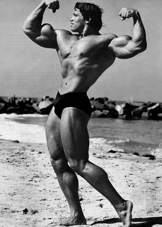 Arnold Bodybuilding Wallpaper 454301 Arnold Schwarzenegger Bodybuilding Arnold Bodybuilding Schwarzenegger Bodybuilding