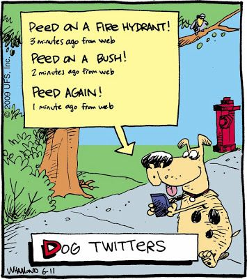Barks And Blooms Friday Fido Funnies Funny Cartoons Funny Dogs