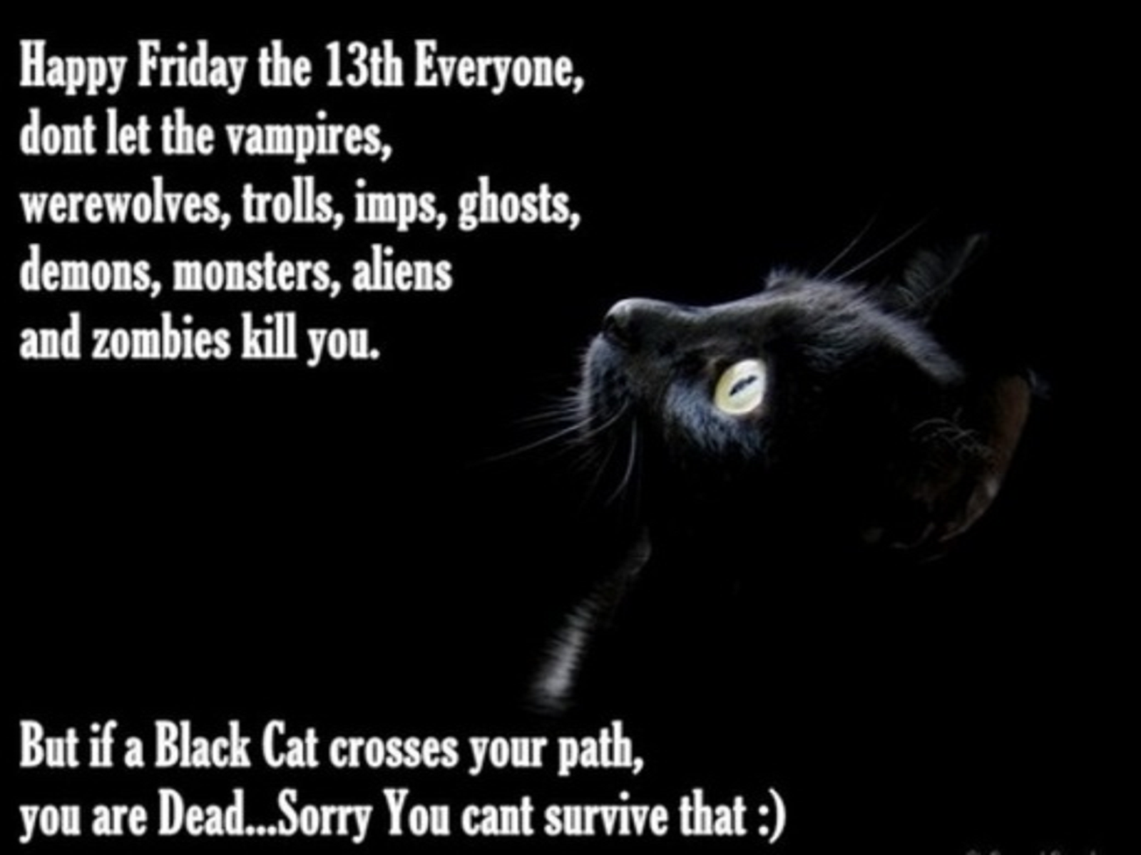 Friday The 13th Happy Friday The 13th Google Search Black Cat