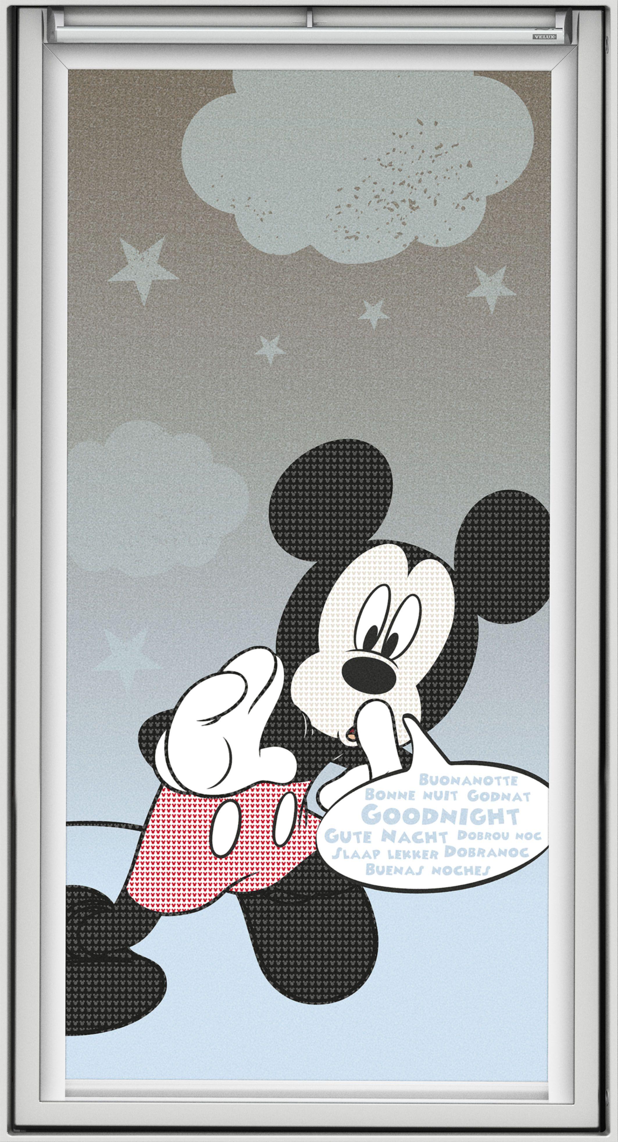 Die Symbolfigur von Disney überhaupt: Micky Maus. Der weltberühmte ...