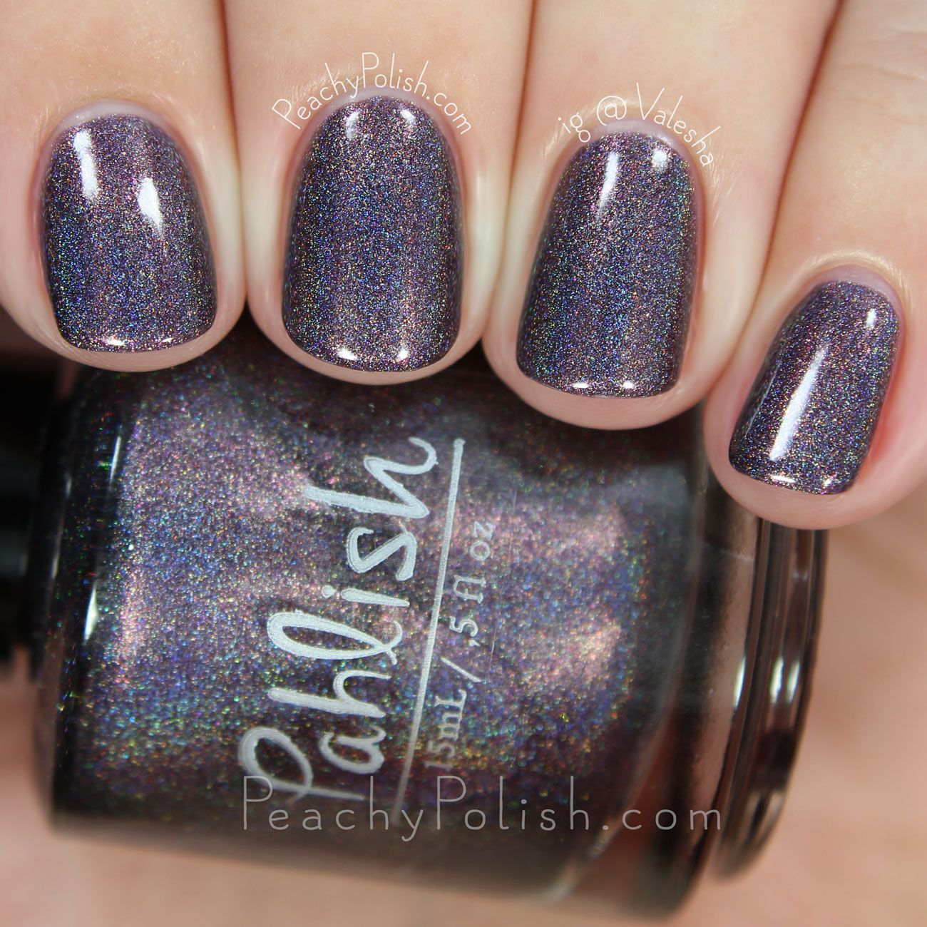 Pahlish Asteroid B-612 | Matters Of Consequence Collection | Peachy ...