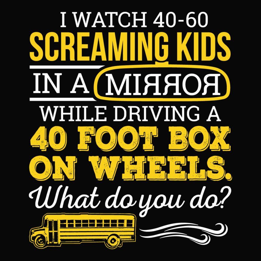 School Bus Driver What Do You Do School bus driver