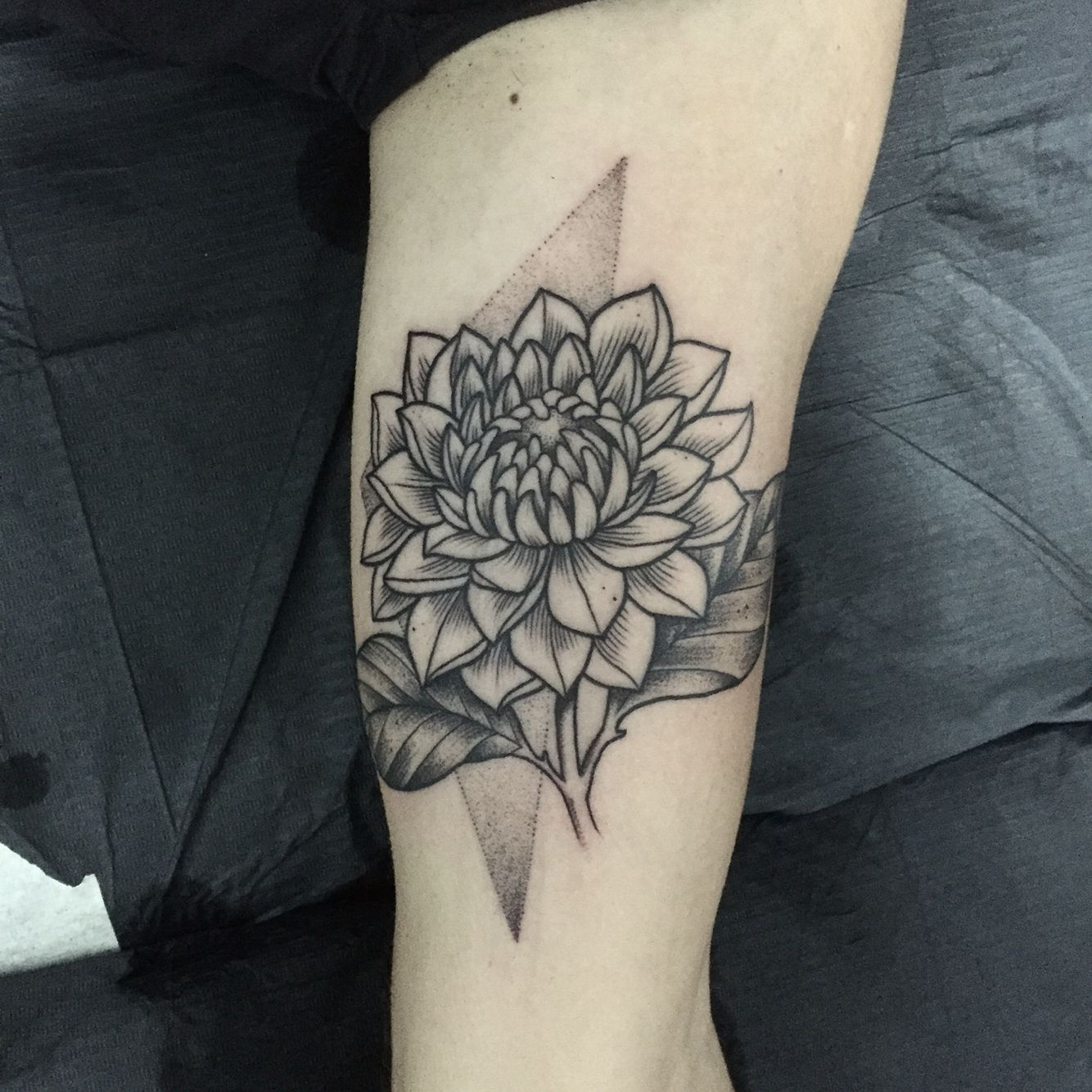 Floral Engraving Tattoo By Miss Sita Line Work Dahlia Botanical Dot Work Tattoos Constellation Tattoos Dahlia Flower Tattoos