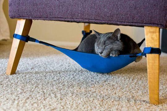 {the cat crib} happy kitty in its hammock-style crib! :)