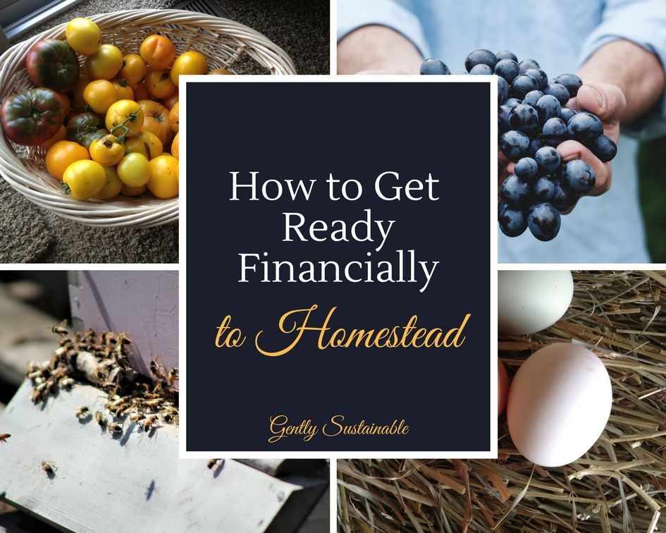 How Much Money Does it Cost to Start a Homestead? | Hobby ...