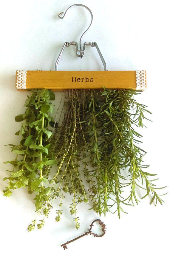 Repurposed Hanging Herb Drying Rack Culture D Herbes Jardins Et