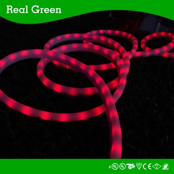 12v 3 wires red chasing led rope lightled neon rope lightchasing 12v 3 wires red chasing led rope lightled neon rope lightchasing mozeypictures Image collections