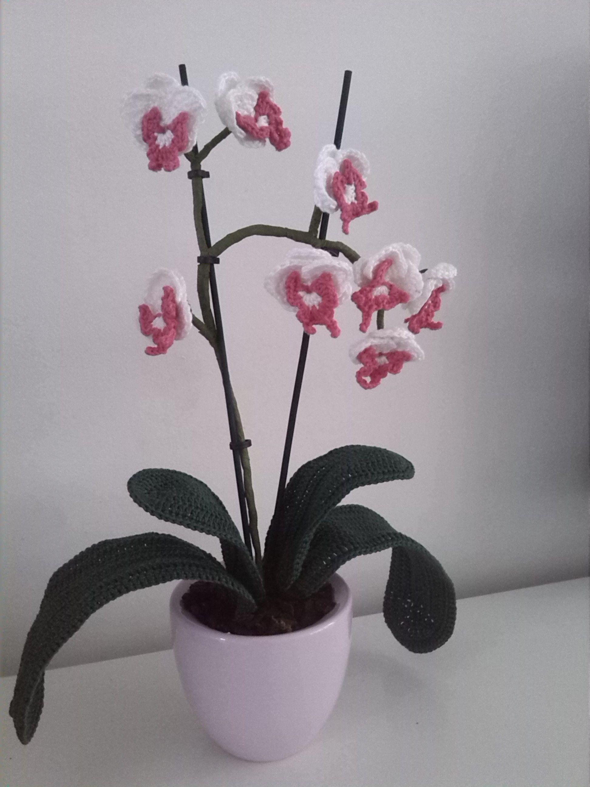 Orchidee Gehaakt Haken Crochet Flowers Crochet En Crochet Fruit