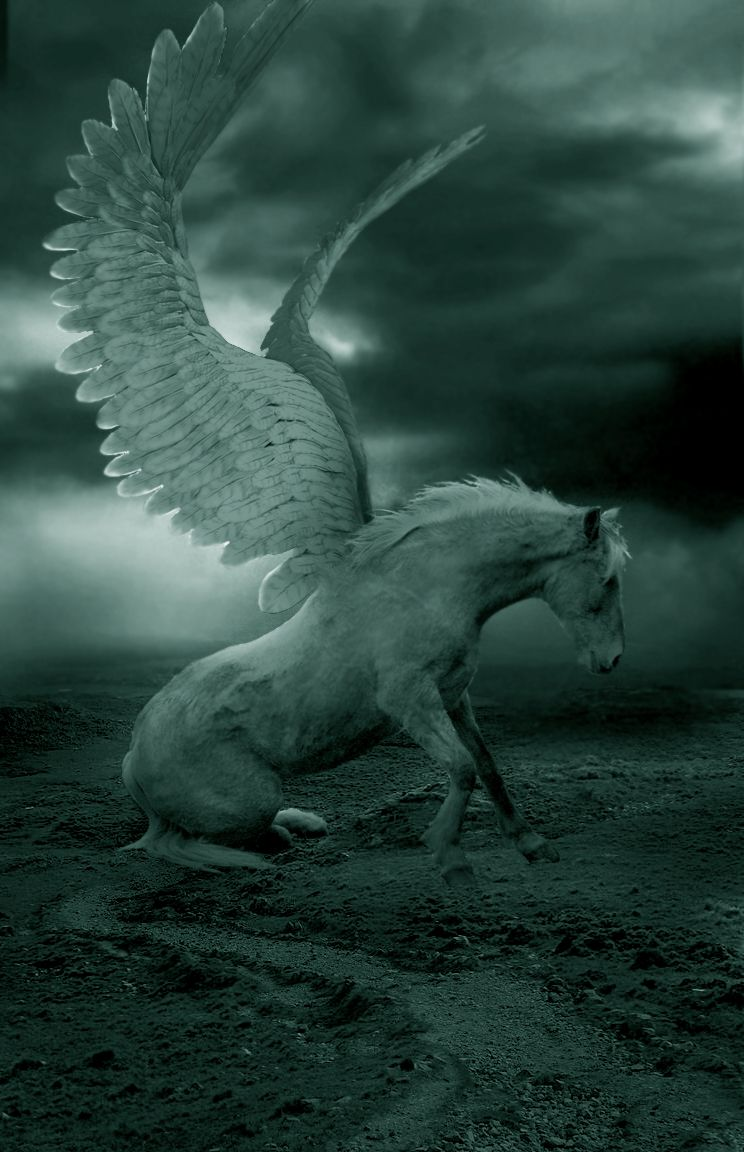 PEGASUS - (Greek mythology) the immortal winged horse that sprang from the blood of the slain Medusa; was tamed by Bellerophon with the help of a bridle given him by Athena; as the flying horse of the Muses it is a symbol of highflying imagination.