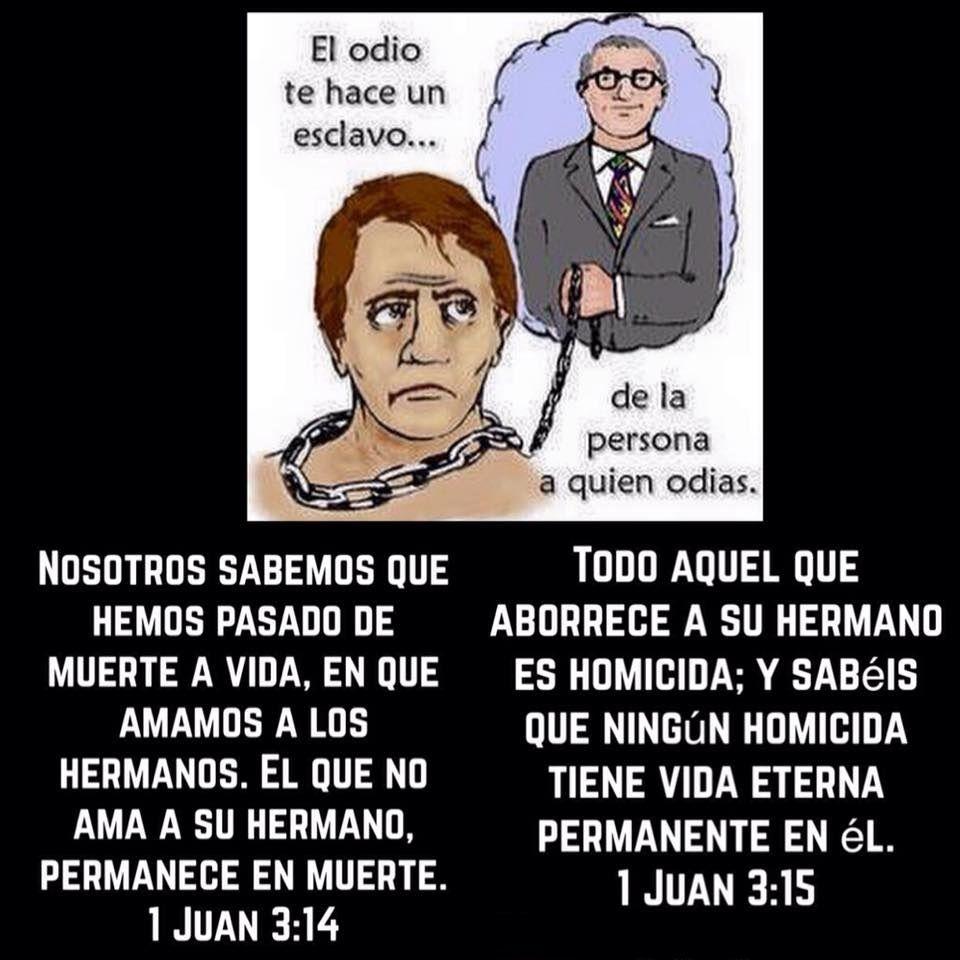 El Odio Te Hace Un Esclavo De La Persona A Quien Odias Lee 1 Jn 3 15 Y 1 Jn 3 14 Reflection Quotes Quotes Catholic Prayers