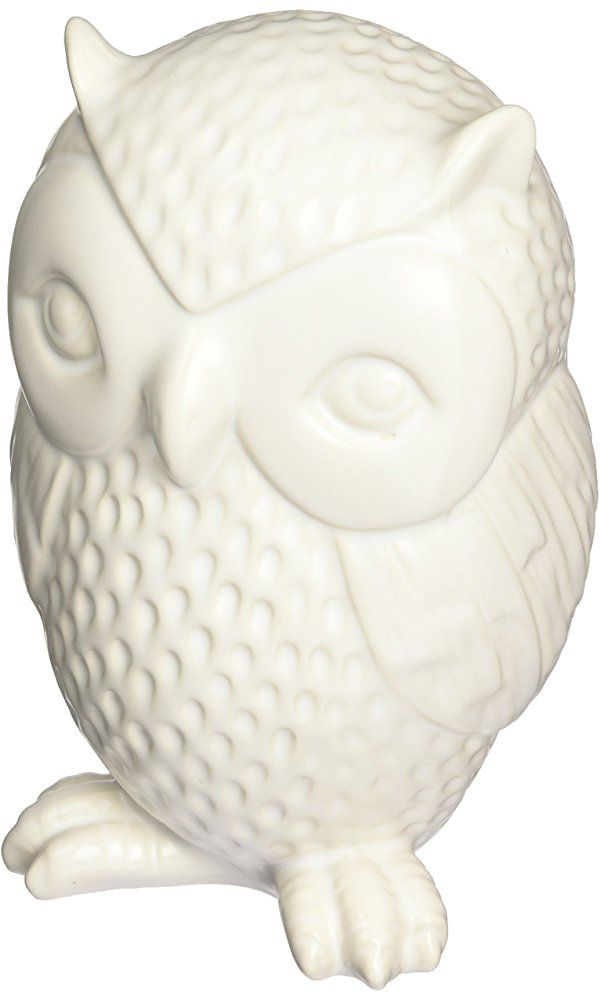 Kikkerland Owl Coin Bank Best Price