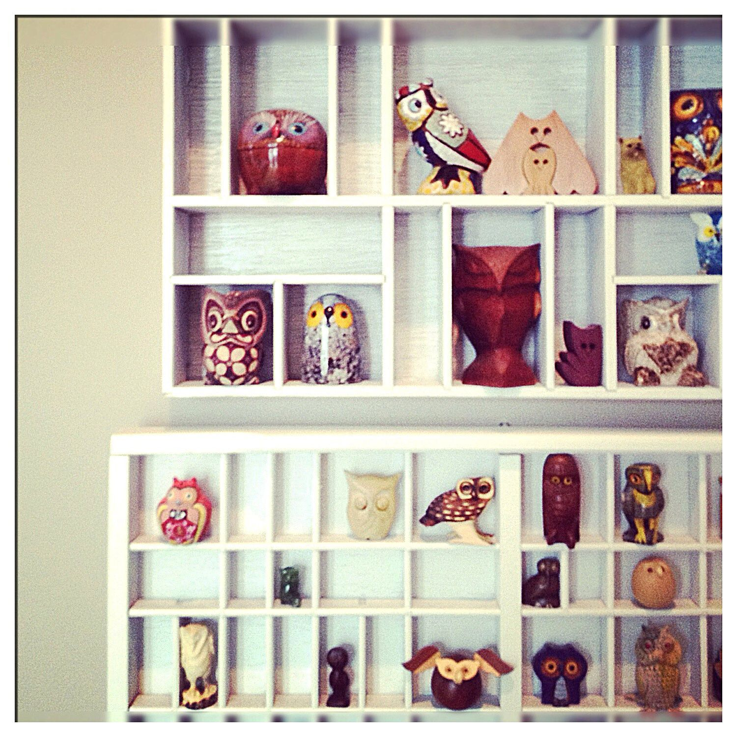 owl collection -- I need this for my elephants!