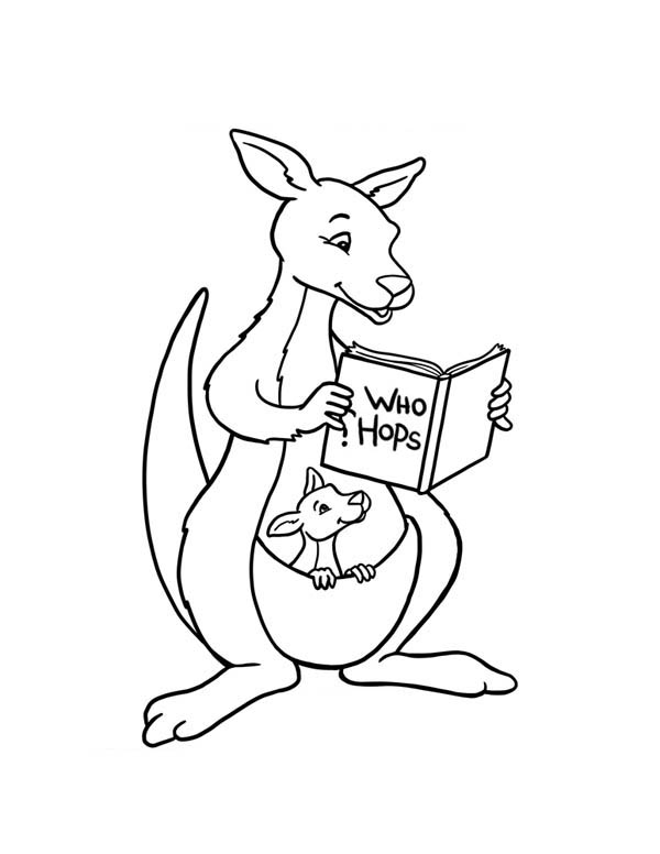 Pin By Addie On Kangaroo Coloring Pages Coloring Pages Coloring Books Coloring Pictures