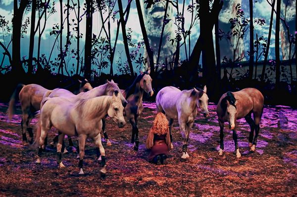 Darley's Travel Blog - Cavalia's Odysseo DC Review - Equitrekking