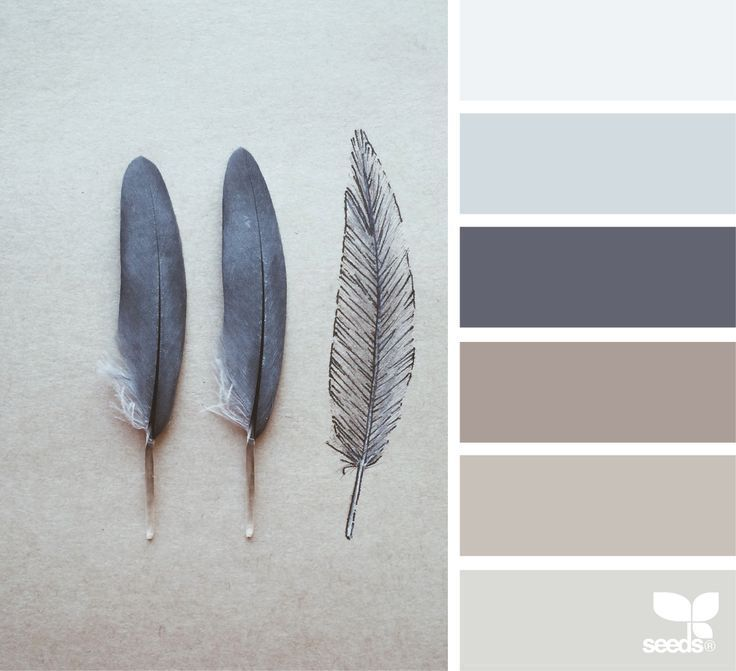 Feathered Tones Grey Beige Taupe Color Palette