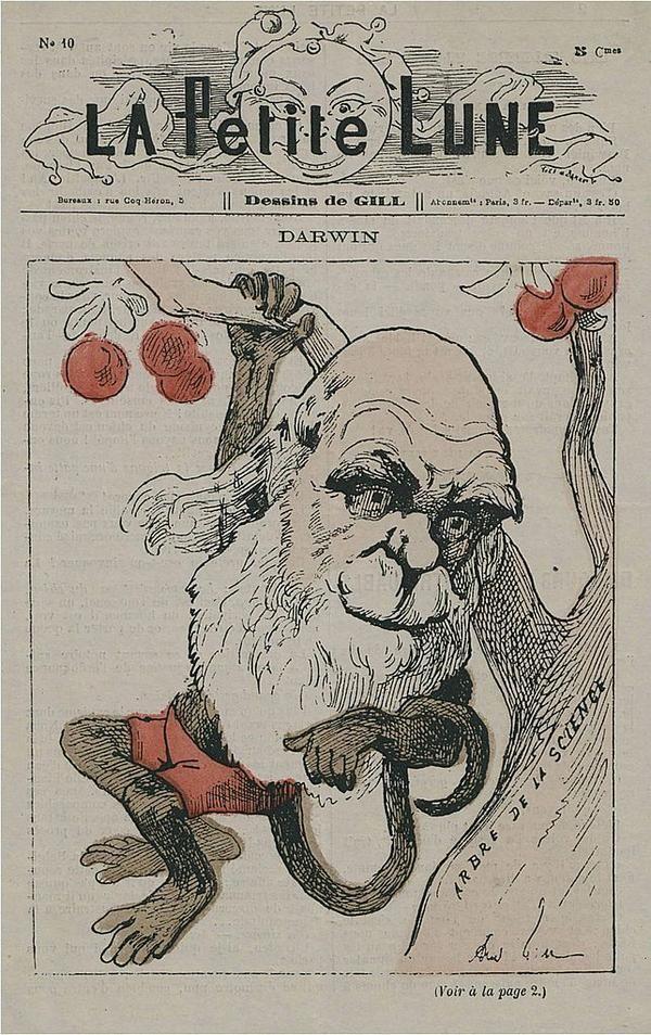 Caricatura de Charles Darwin como un mono en la portada de La Petite Lune, una revista satírica parisina de 1878.