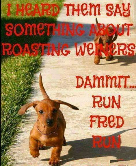 I heard them say something about roasting weiners. Dammit ...run Fred run.