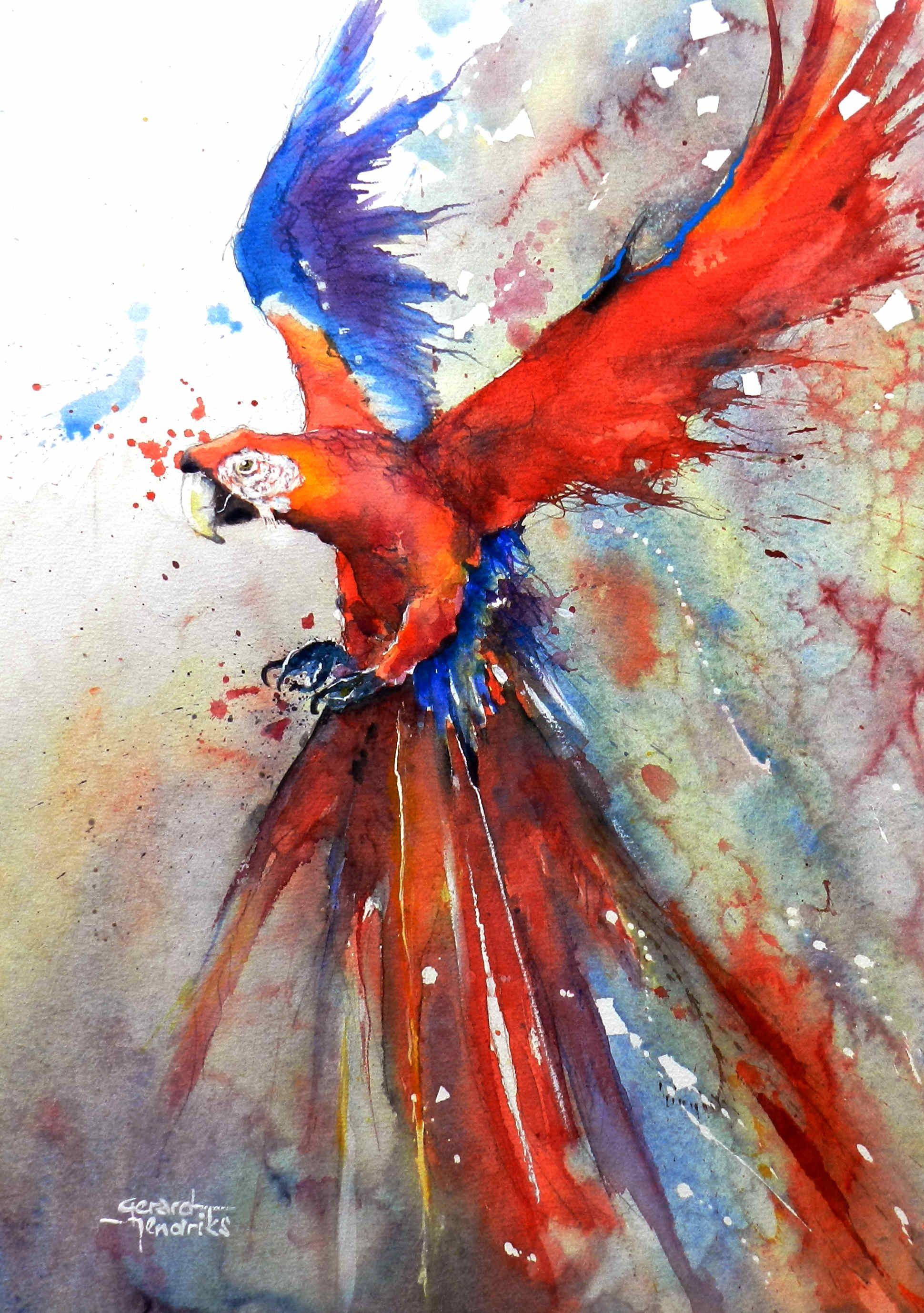 Parrot Bird Watercolor Paintings