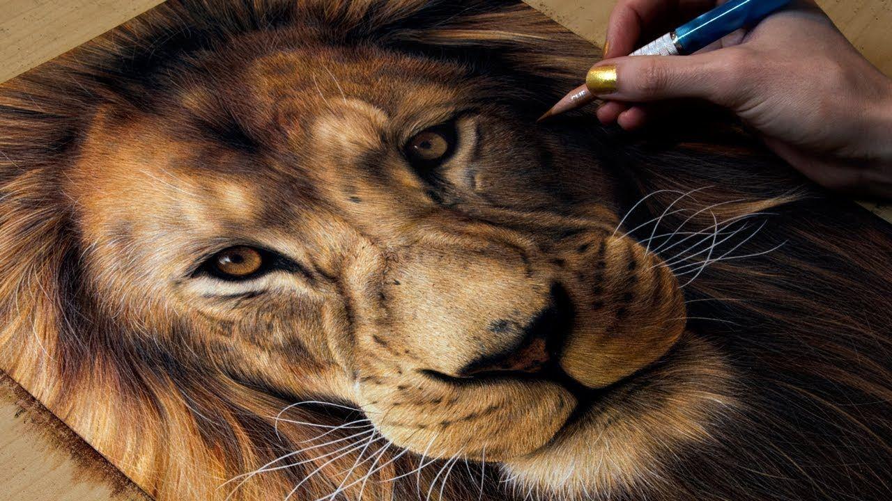 Drawing A Lion Heather Rooney Dessin Art Crayon De Couleur