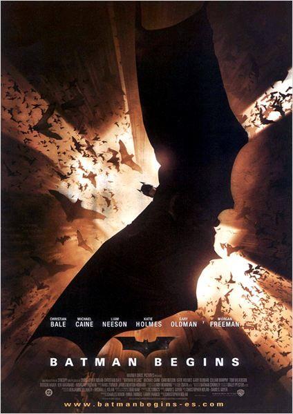 Batman Begins : Cartel (2005)