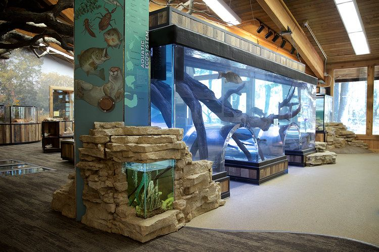 Quarry Hill Nature Center Design Build Blue Rhino Studio Building Design Zoo Architecture Design