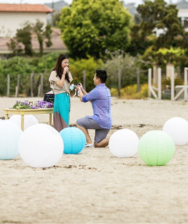 Mint & Lavender Marriage Proposal In San Diego By The YES