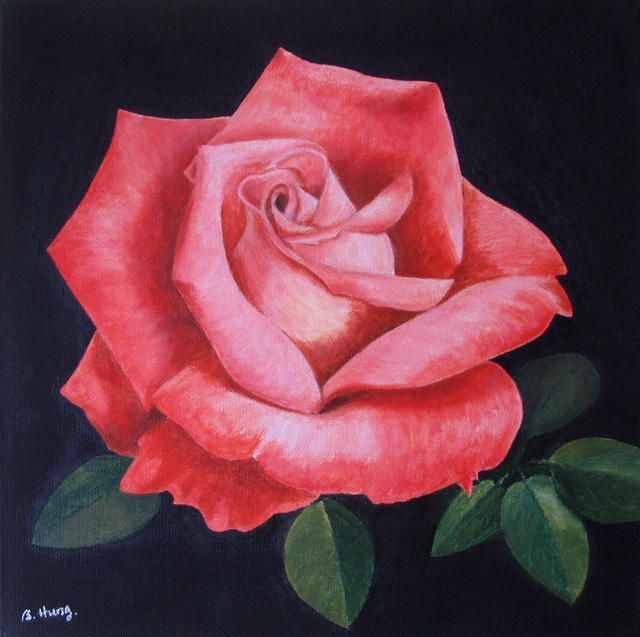Image result for roses on acrylic black background for for Acrylic painting on black background