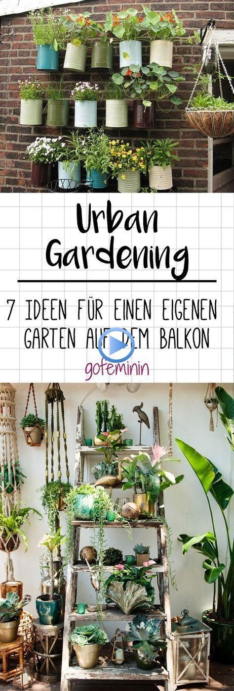 Photo of Urban gardening: 7 ideas for your own vegetable garden on the balcony #vegetable