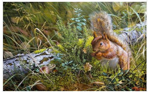 Squirrel Paintings Promotion-Shop for Promotional Squirrel ...