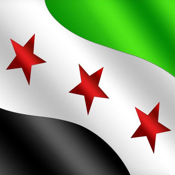 صور العلم السوري الثورة والحرية عالم الصور