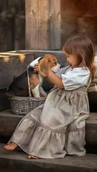 Fotografie Kleines Madchen Mit Jungem Hund Kinder Tiere Susseste Haustiere Und Foto Kinder