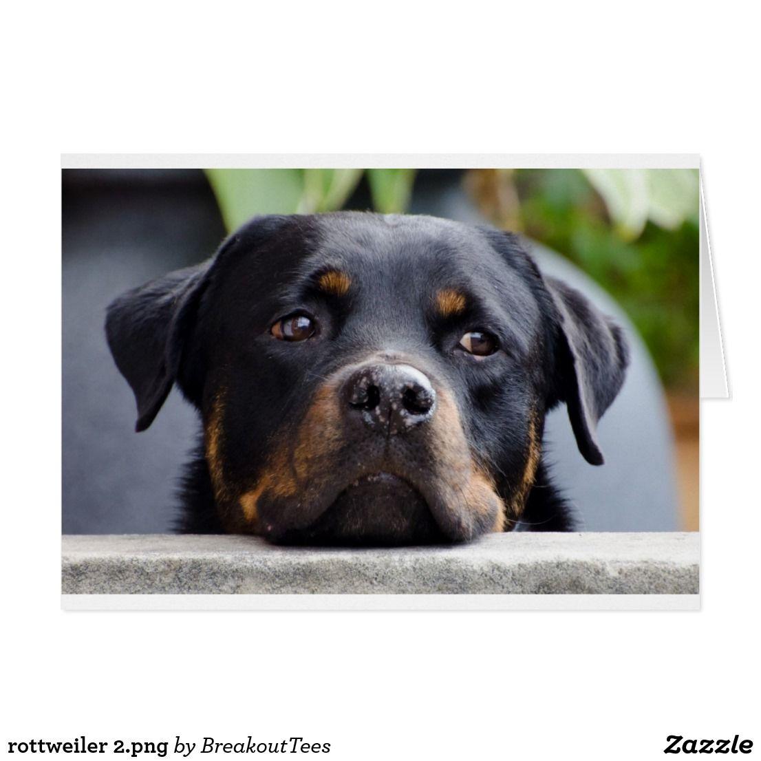 Rottweiler 2 Png Card Zazzle Com Rottweiler Dog Rottweiler