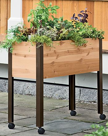 Elegant Herb Garden, Urban Garden, Growing Herbs | Gardeneru0027s Supply