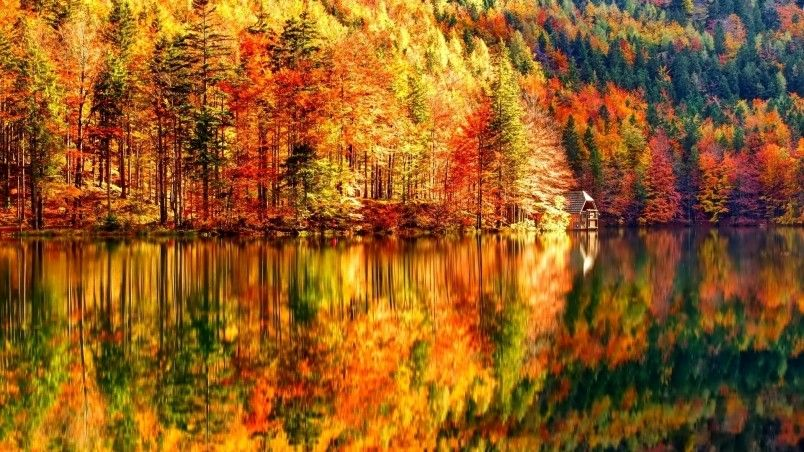 Autumn Is The Most Colorful Of Seasons Description From Wallpaperfx Com I Searched For This On Bing Co Desktop Wallpaper Fall Autumn Landscape Fall Wallpaper