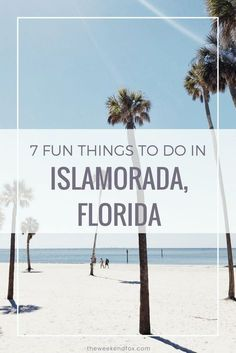 7 fun things to do in islamorada florida florida keys florida rh pinterest ch  things to do in the keys without a boat