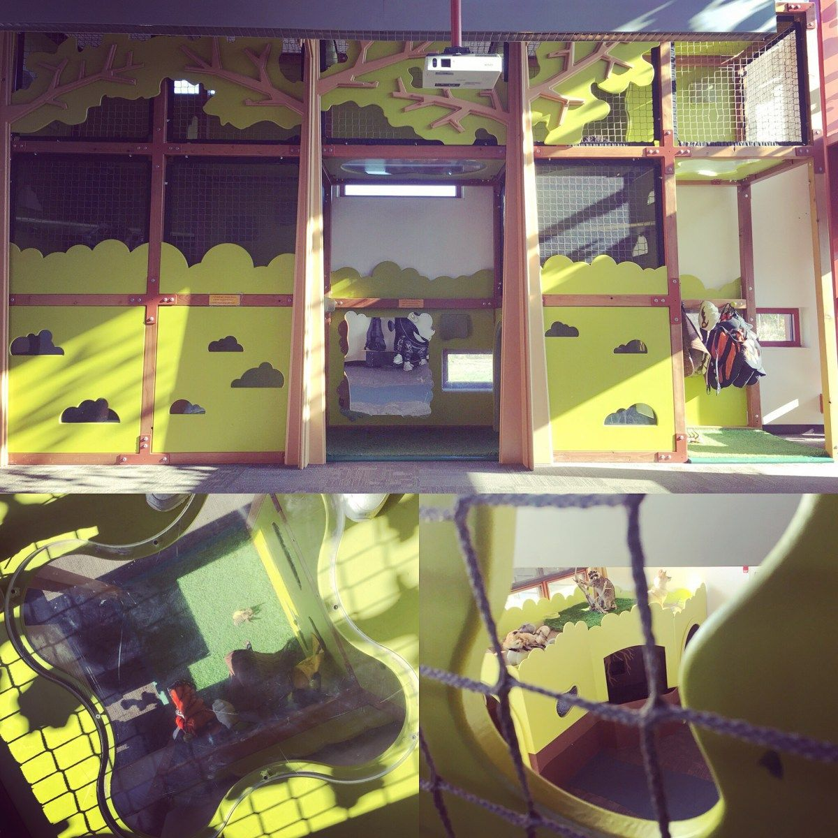 Grange Insurance Audubon Center Columbus Kids Play Spaces