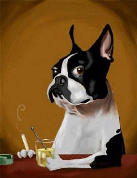 Boston terrier Mad Men art