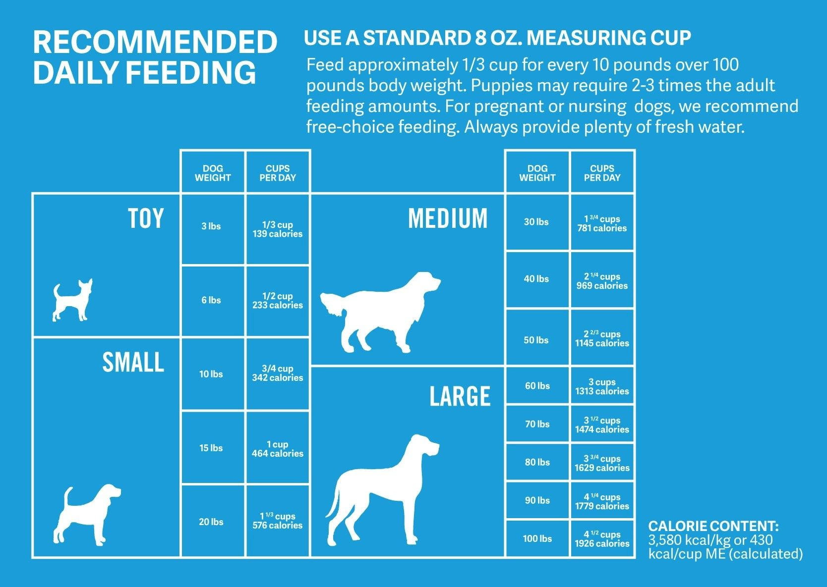 Are you feeding your dog the right amount puppy feeding