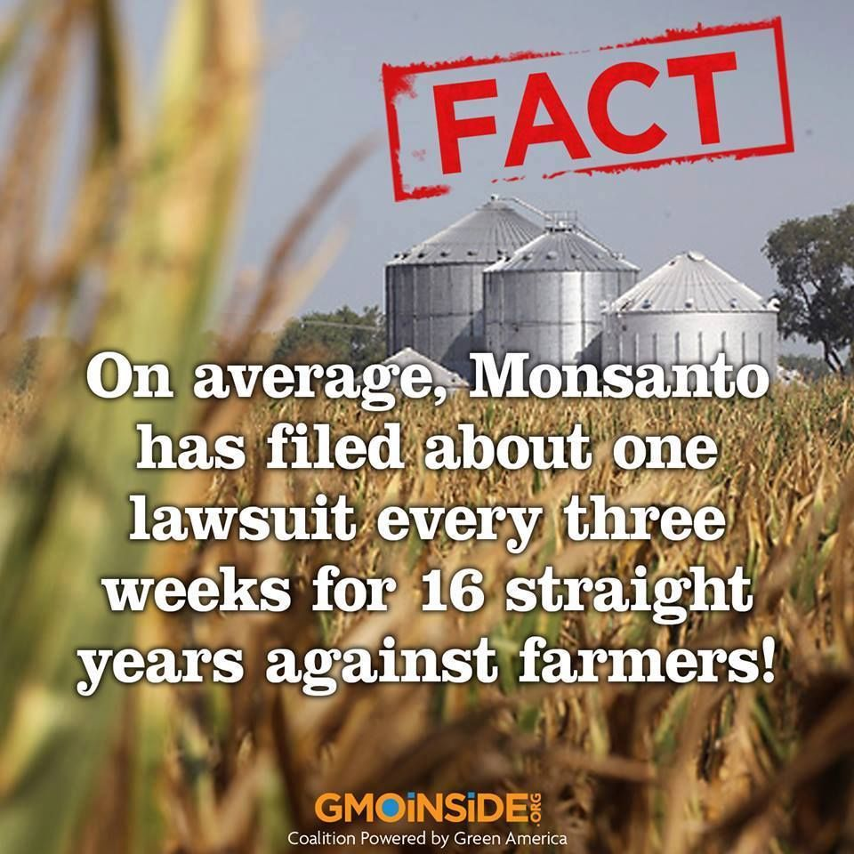Gmo Government Killing Us In Our Food