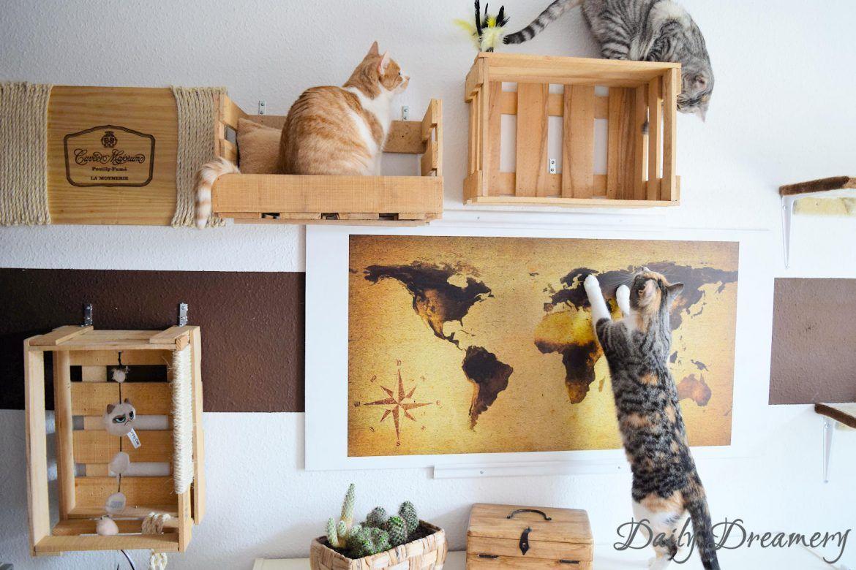 [Enthält Werbung] Wohnungskatzen richtig halten DIY