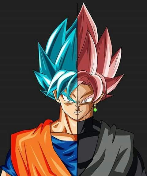 super saiyan blue goku and super saiyan roa e goku black