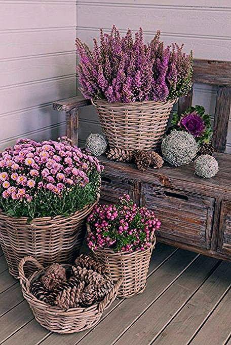 Photo of 15 Einzigartige und schöne Behältergartenideen – Garten
