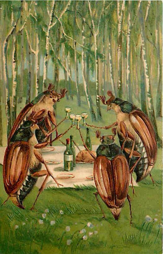 Beetle picnic