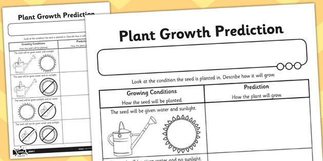 plant growth prediction worksheet natural sciences pinterest worksheets and teaching ideas. Black Bedroom Furniture Sets. Home Design Ideas
